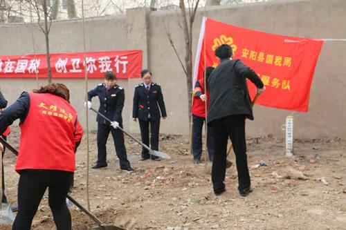 国税局志愿者植树现场-安阳文明网