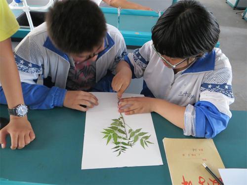 世界环境日——安阳开展植物标本创意画制作活动